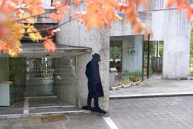 iwate19.jpg